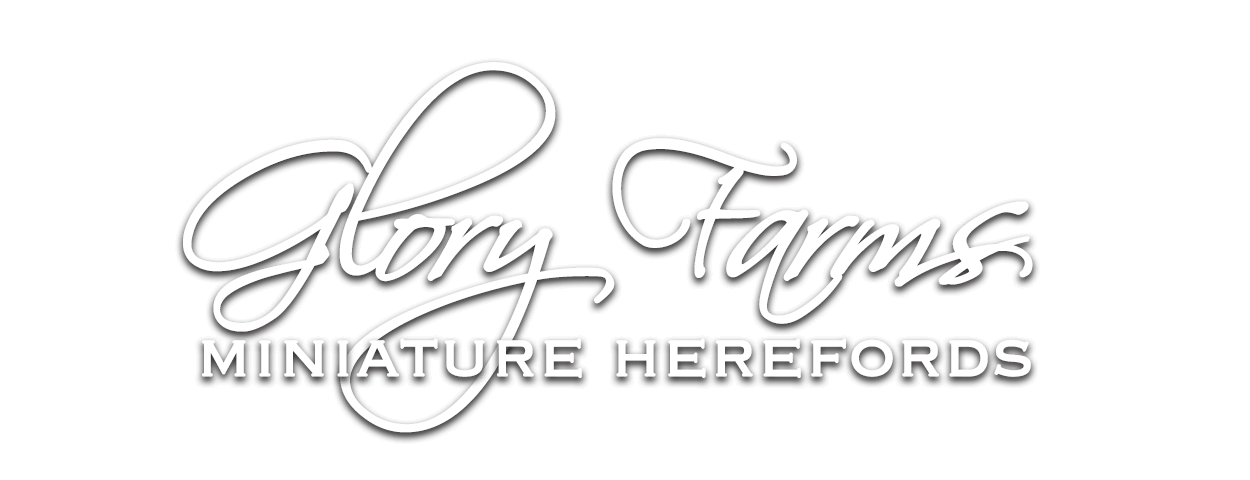 Glory Farms
